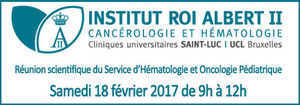 Réunion scientifique de l'Institut Roi Albert II
